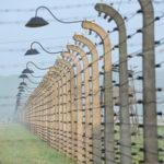 Ismeretlen fotógyűjteményt fedeztek fel a lengyelországi zsidóság megsemmisítéséről