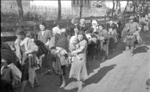 Emberi maradványokat találtak egy romániai zsidó tömegsír közelében
