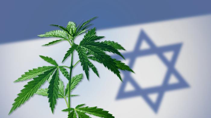 Szabad a vásár: Izrael orvosi kannabisz exportőr lett