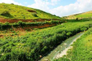 Izraelben nem mindenki szeretné a Jordán-völgy annektálását