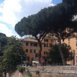 Amikor egy római kórház kitalált betegséggel ijesztette el a nácikat