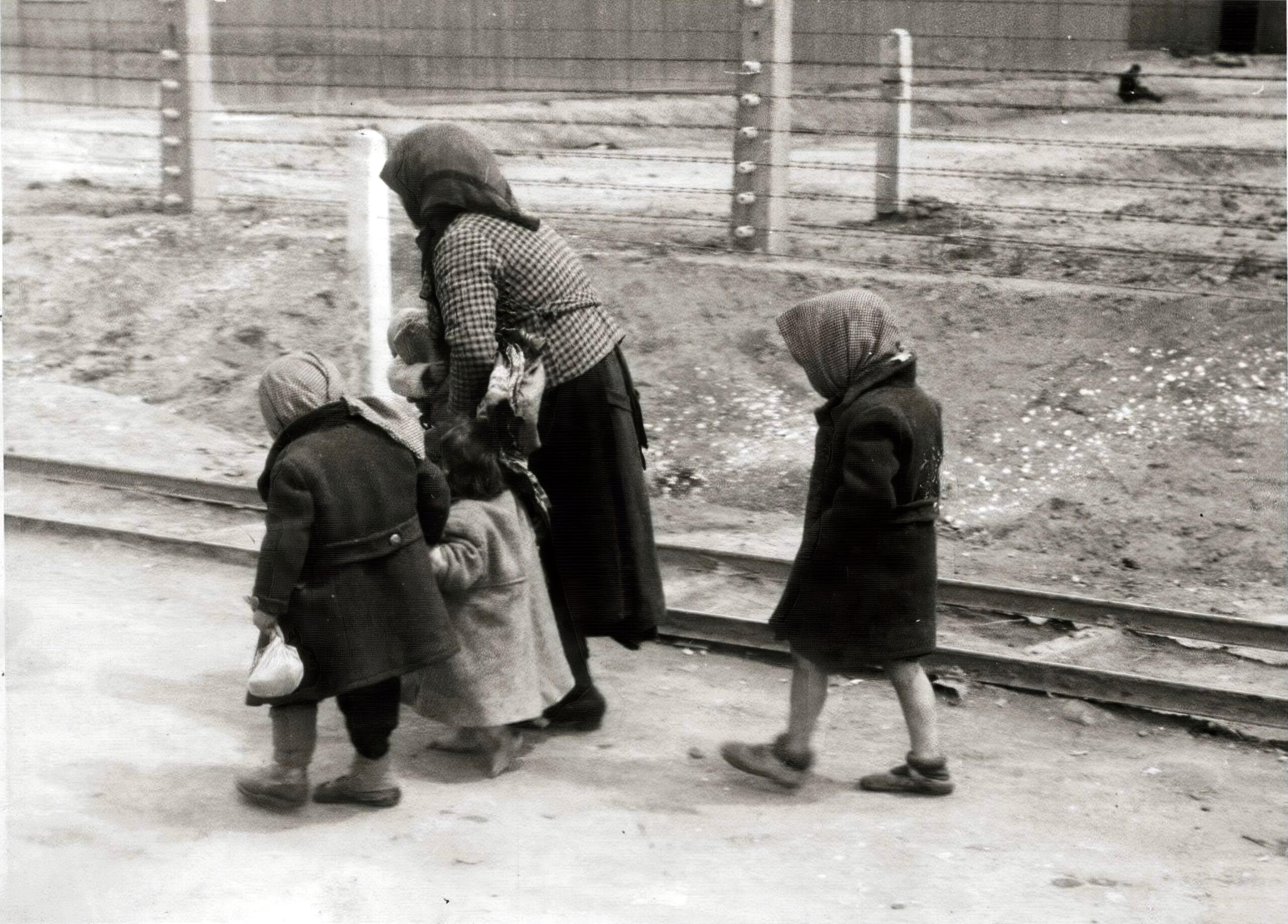 Horthy unokája bocsánatot kért a holokausztért