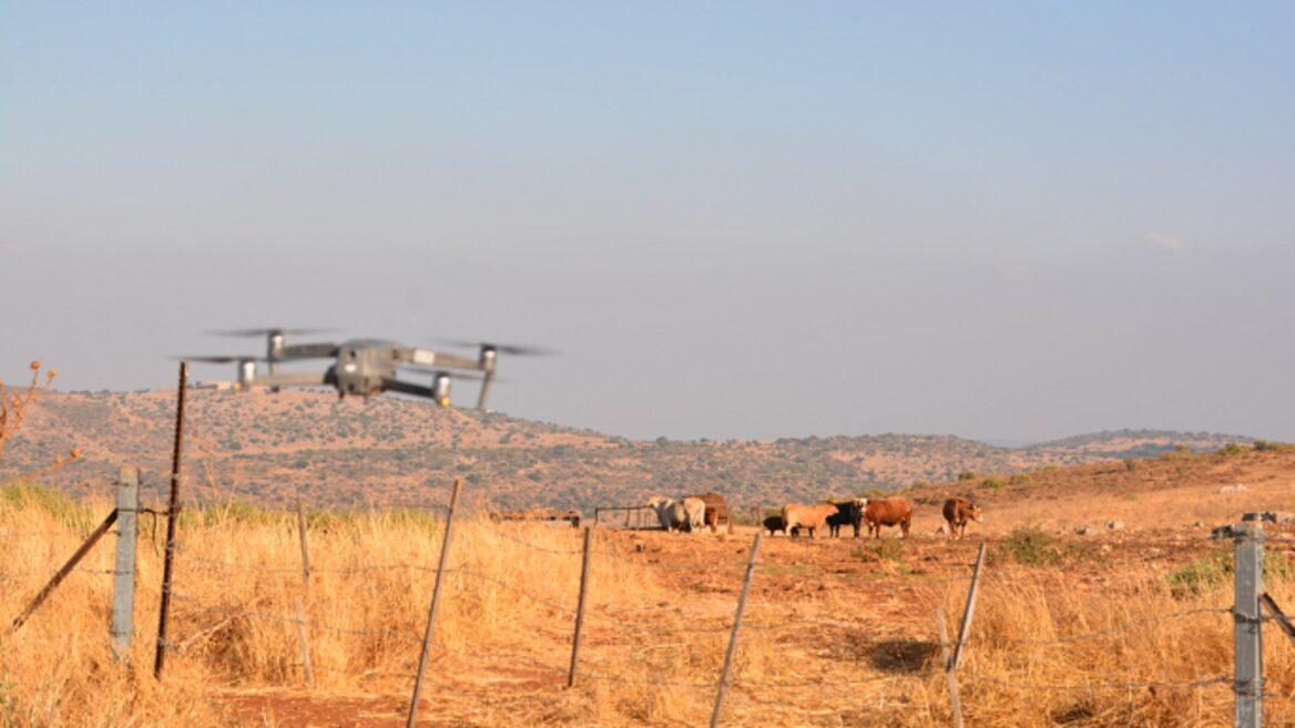 """""""Joe"""", a vadakat terelő izraeli drón"""