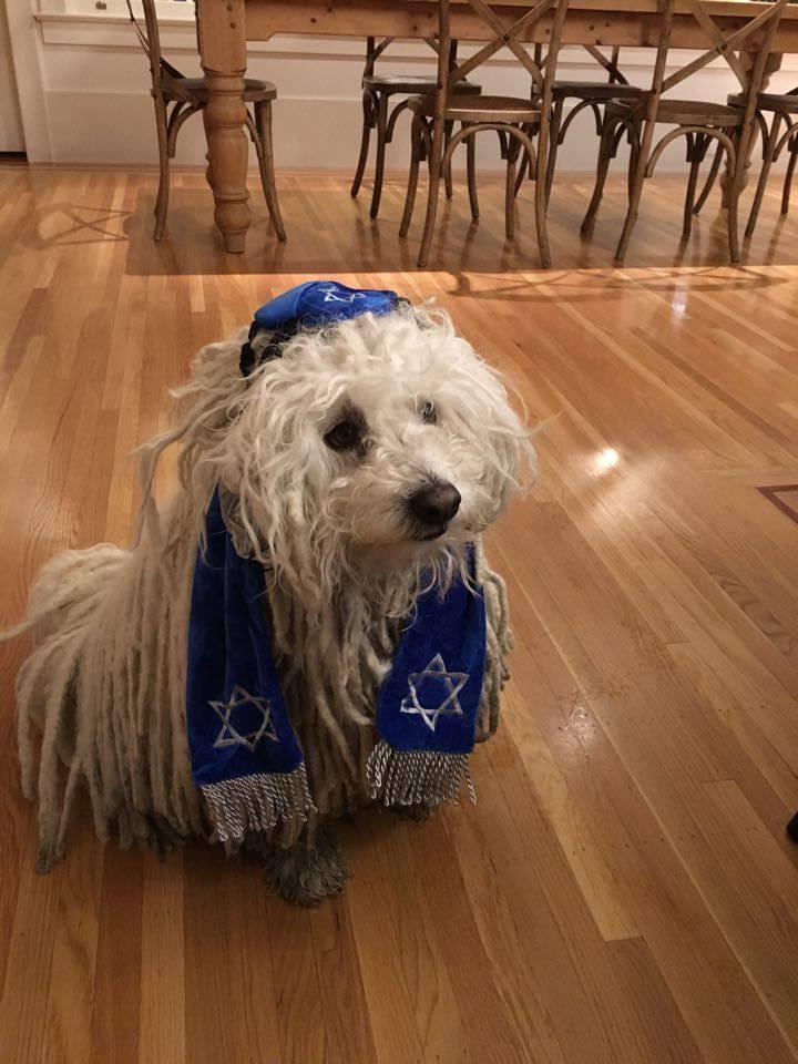 Már Zuckerberg puliját is antiszemiták zaklatják a Facebookon